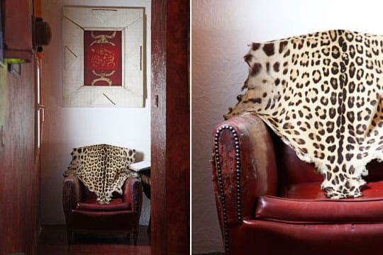 Lumière léopard