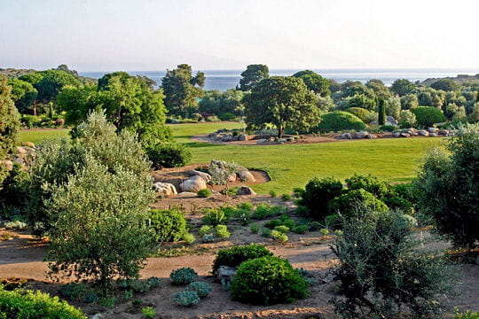 Un jardin corsé en Méditerranée