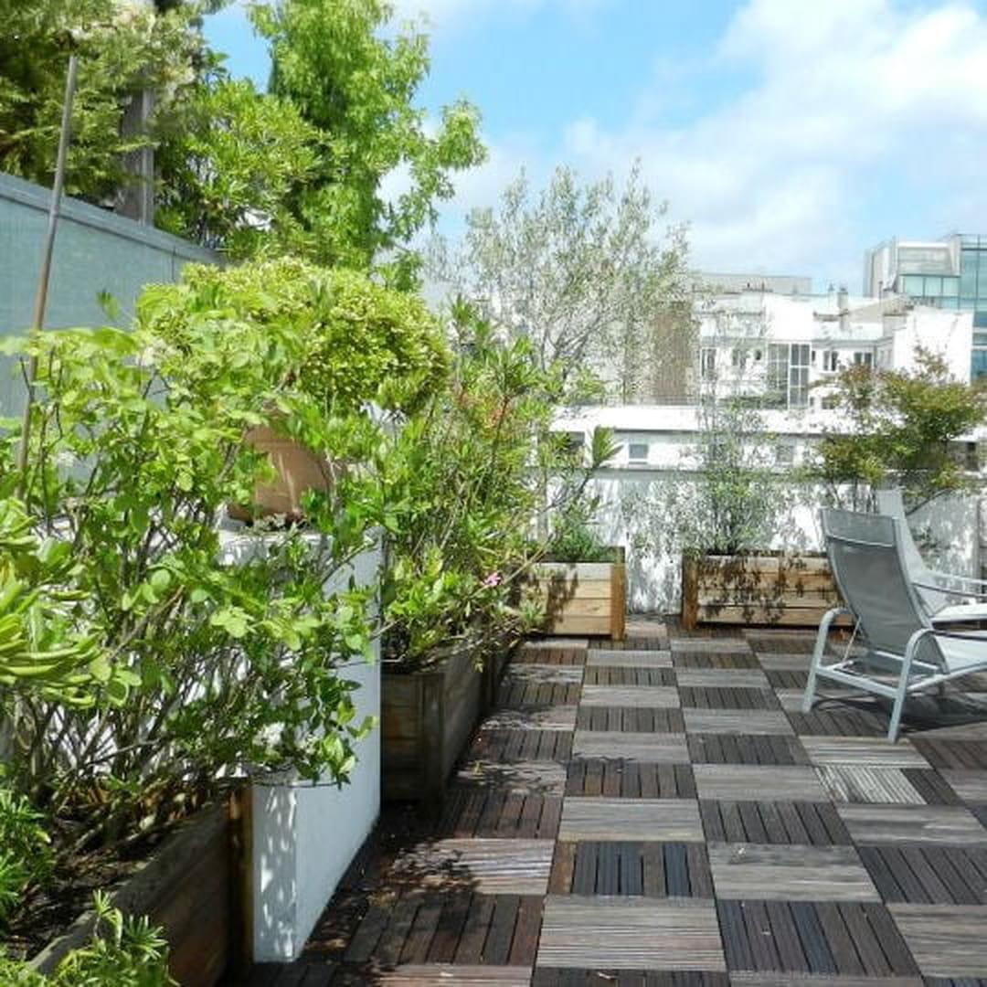 Arbuste Brise Vue Terrasse en ville, comment avoir un balcon ou une terrasse bien verts ?