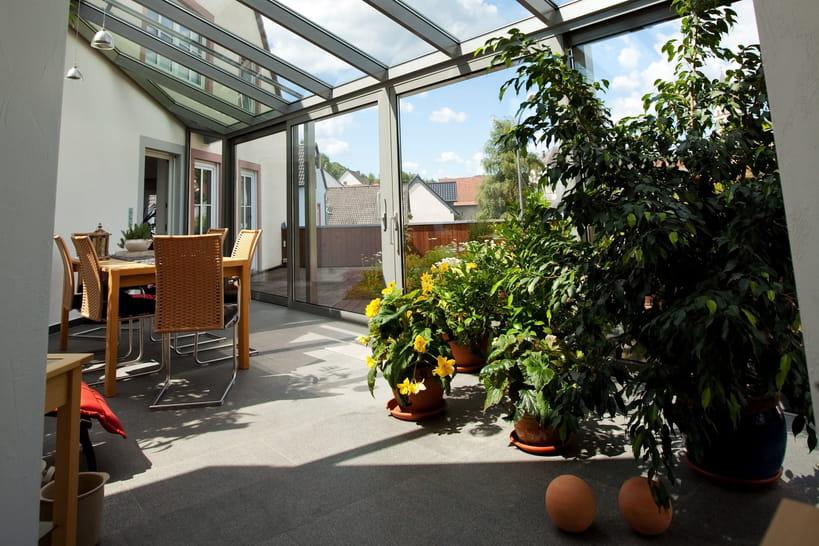 Quelles plantes dans un jardin d'hiver ou une véranda?