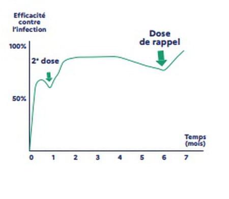 Schéma de l'efficacité du vaccin contre le Covid-19