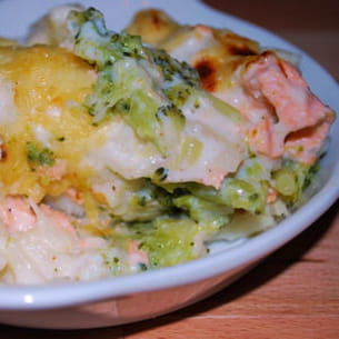 gratin de brocolis, choux-fleurs et saumon