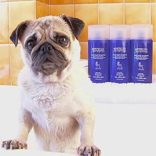 les produits mystic sea sont des soins de spa pour chien.