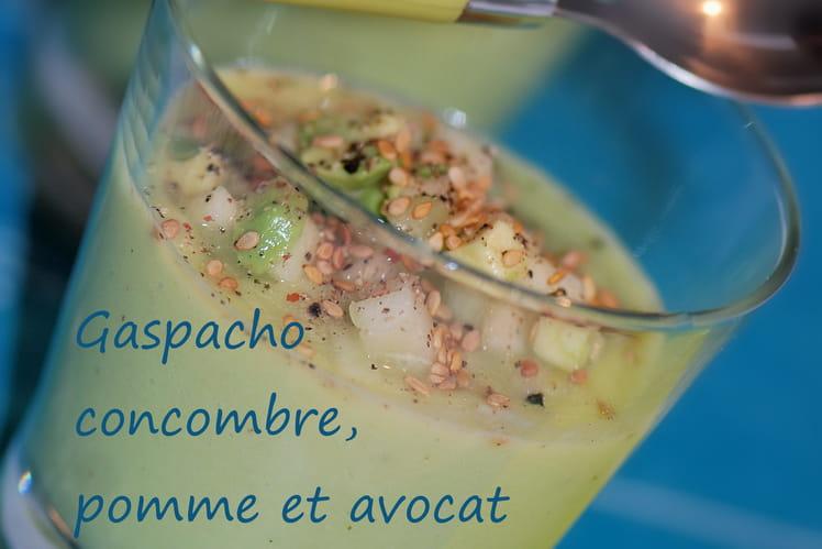 Gaspacho concombre, pomme et avocat