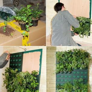 quelles plantes pr voir pour le mur v g tal d 39 int rieur. Black Bedroom Furniture Sets. Home Design Ideas