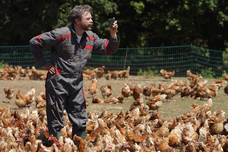 Comme ROXANE, 4films qui parlent des agriculteurs et des éleveurs