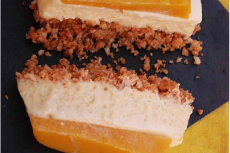 Terrine mangue-chocolat blanc