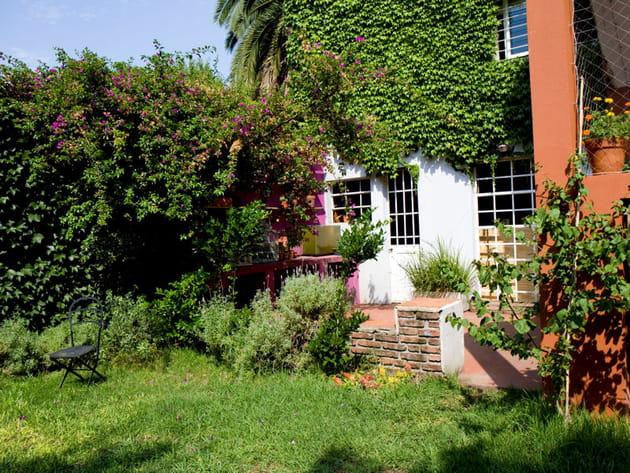 Une façade envahie de plantes grimpantes