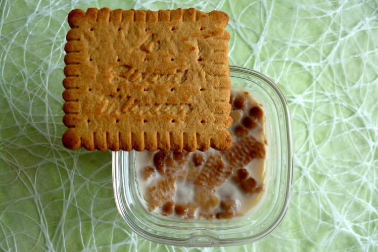 Yaourts maison allégés aux biscuits minceur diététiques et hyperprotéinés
