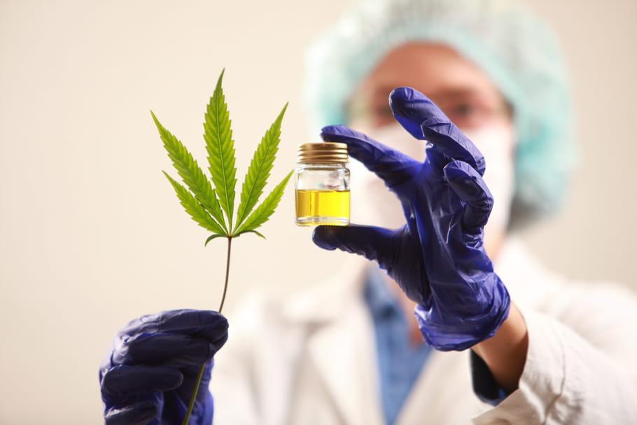 Cannabis thérapeutique: l'expérimentation autorisée par décret en France