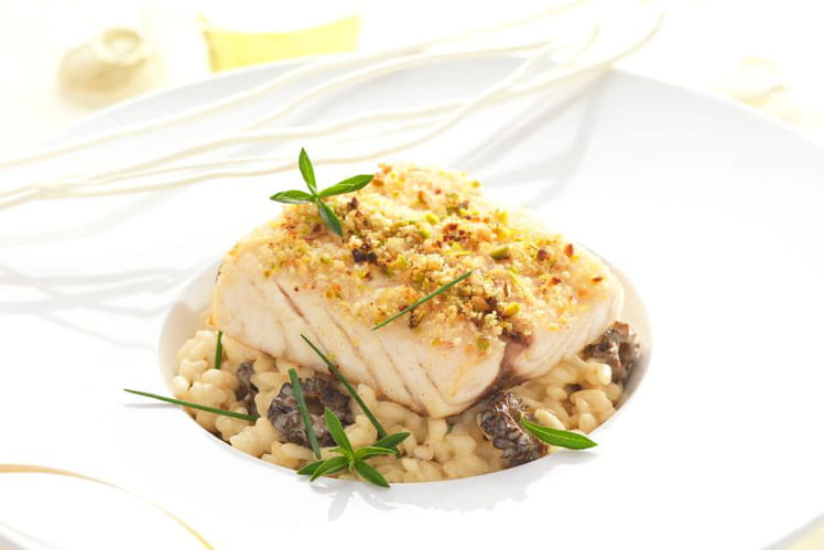 Filet de maigre, risotto aux morilles