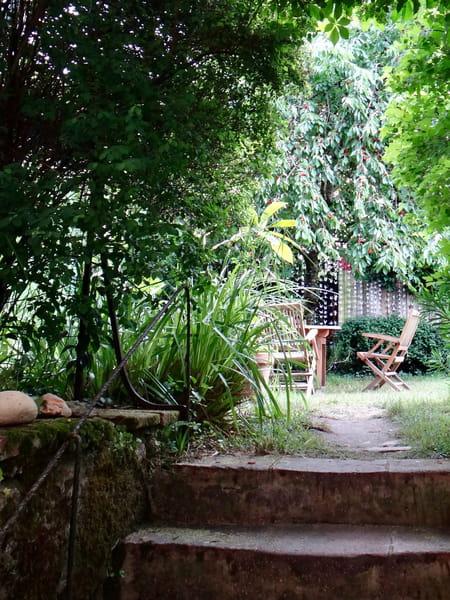 Jardin conseil pour le jardinage l 39 am nagement et la for Conseil pour jardiner