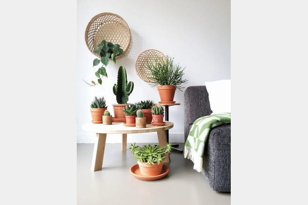 15idées indoor et outdoor pour décorer avec des pots en terre cuite