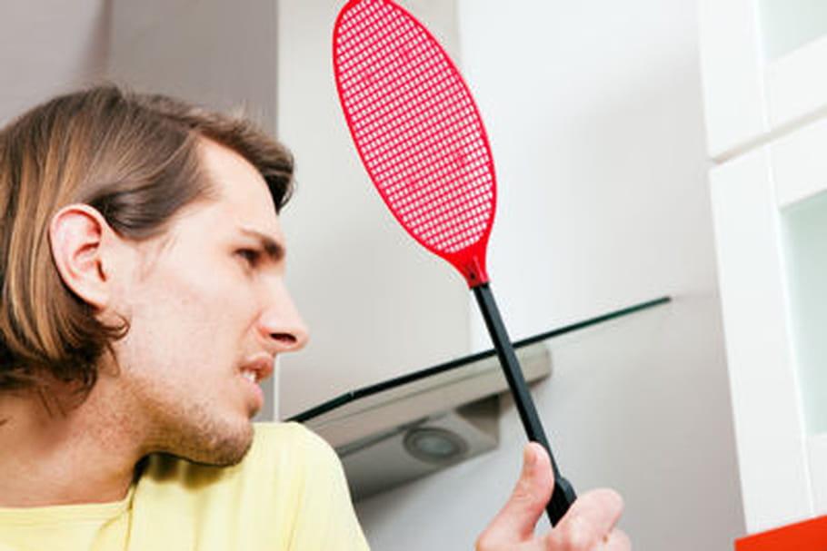 Moustiques, tiques... Pourquoi ces petites bêtes sont-elles dangereuses pour l'homme ?