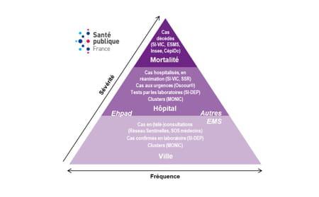schéma de surveillance santé publique france