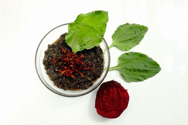 Pesto de betterave rouge au plantain