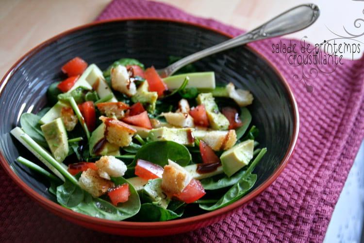 Salade de printemps croustillante avocat, courgette