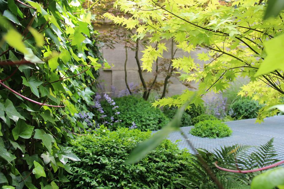 Conna tre le calendrier lunaire pour mieux jardiner - Jardin biodynamique calendrier lunaire ...