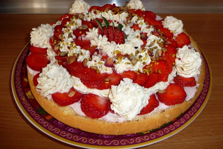 Mousses fraises-rhubarbe sur une génoise