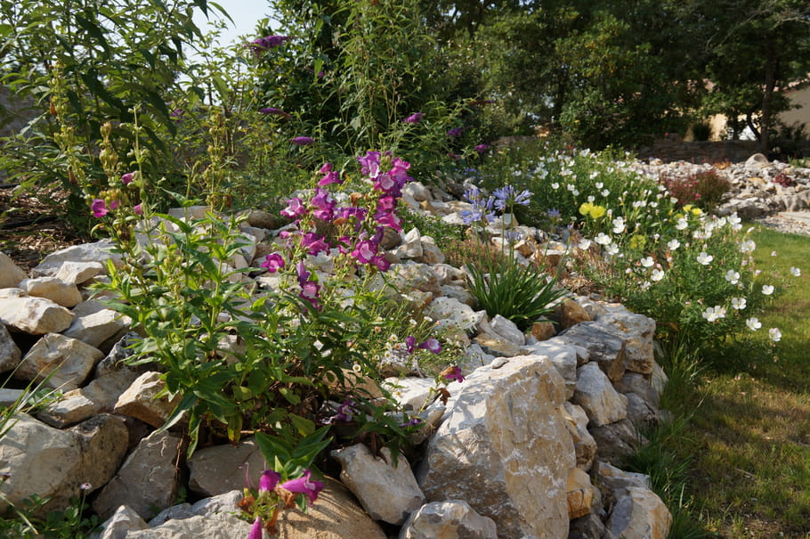 Jardin sec et fleuri un jardin sec et fleuri en ard che for Organiser un jardin fleuri