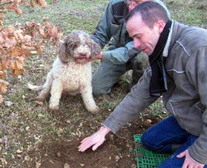 christophe hay en pleine 'chasses' aux truffes