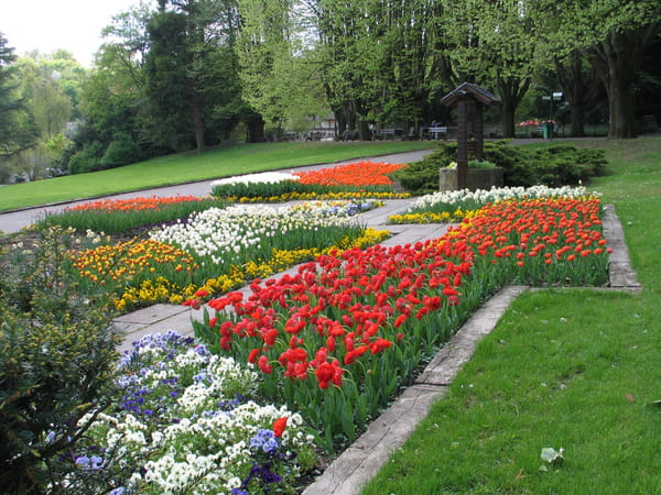 tulipes-au-parc-zoologique-et-botanique-de-mulhouse