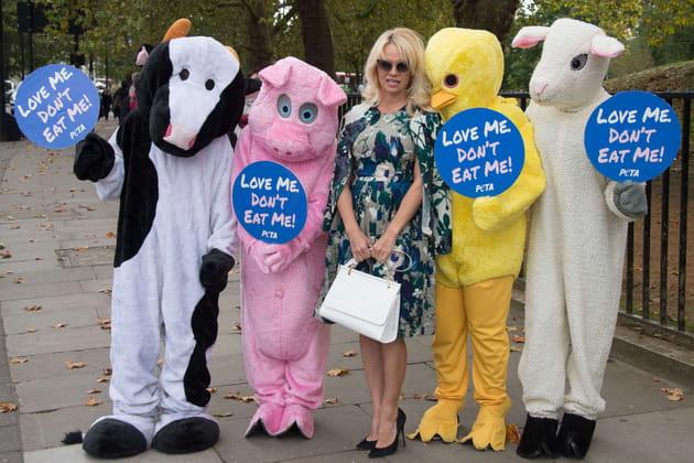 Pamela Anderson, l'amie des bêtes