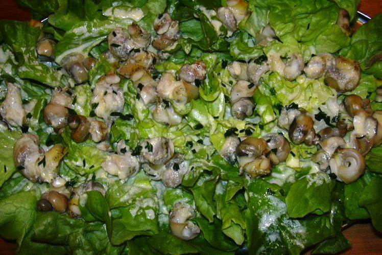 Salade de bulots sauce mousseline