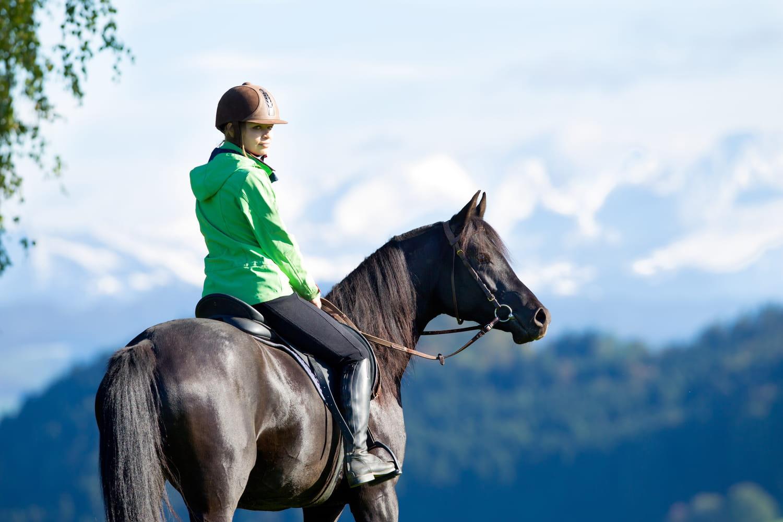 L'univers du cheval: 10choses à savoir