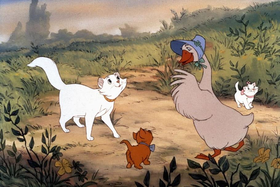 La poule Roxane, mais aussi l'oie Amélia, le jars Martin, le coq Agénor: ça swingue dans le poulailler