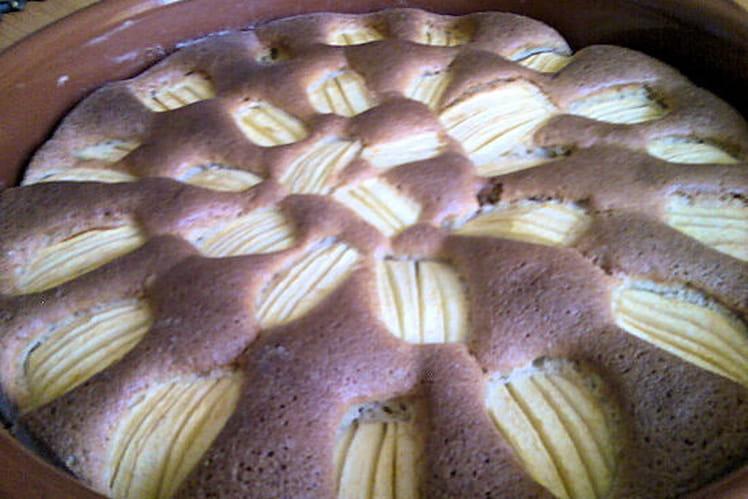 Gâteau léger pomme-cannelle