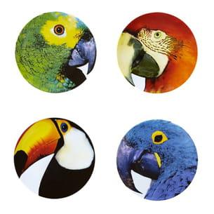 assiettes perroquet et toucan de fleux'