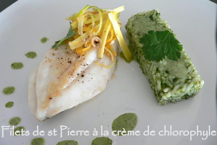Filets de St Pierre à la crème de chlorophylle