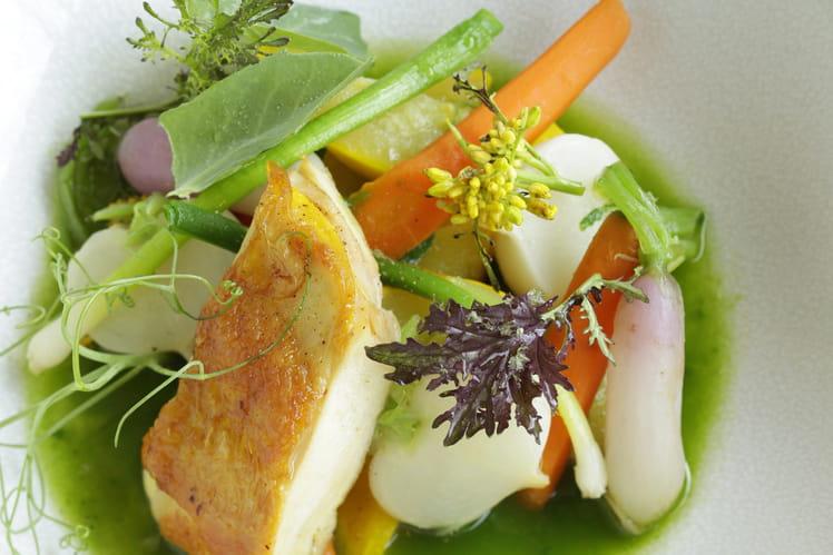 Suprêmes de volaille, bouillon persillé et légumes