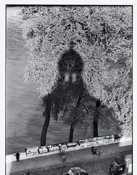 Ombre de l'Institut de Paris, 1956