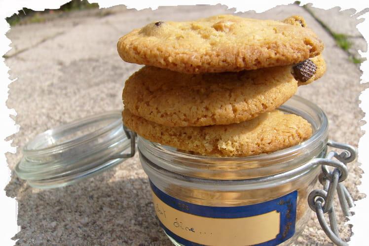 Cookies aux deux chocolats et à la noix de coco