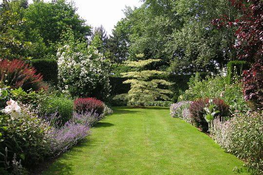 Les magnifiques vivaces des jardins du Botrain