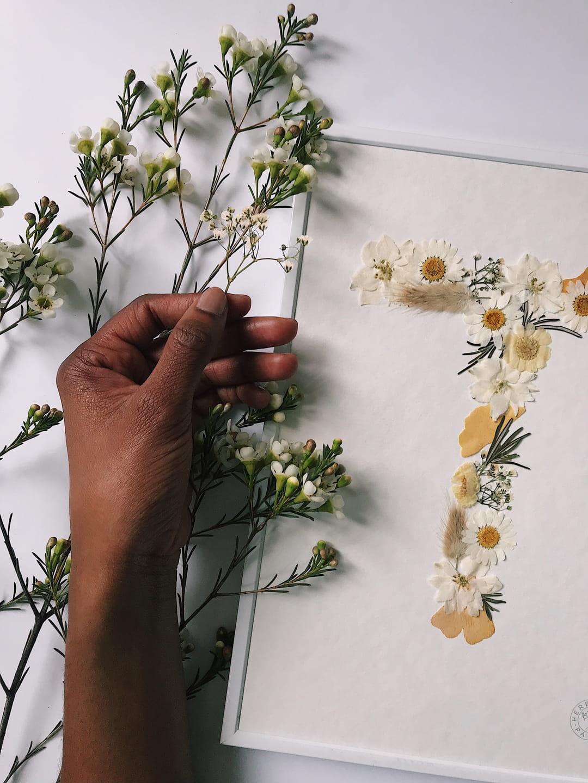 lettre-t-herbarium