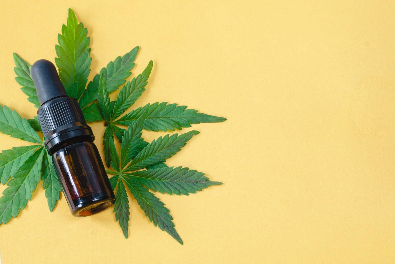 L'Assemblée nationale autorise le cannabis médical