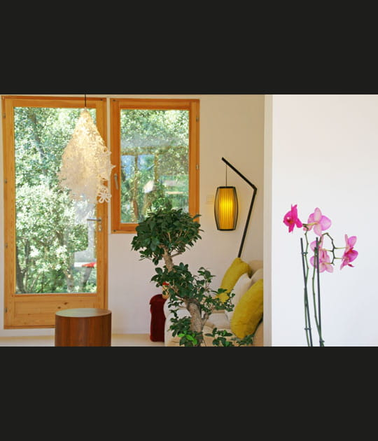 Fenêtre sur la nature
