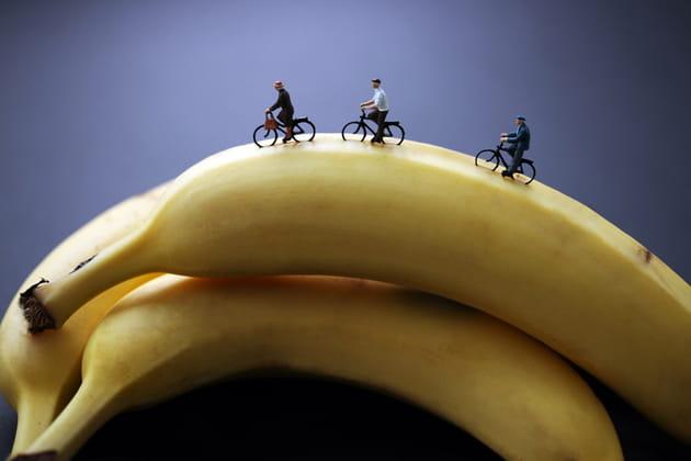 Balade à banane