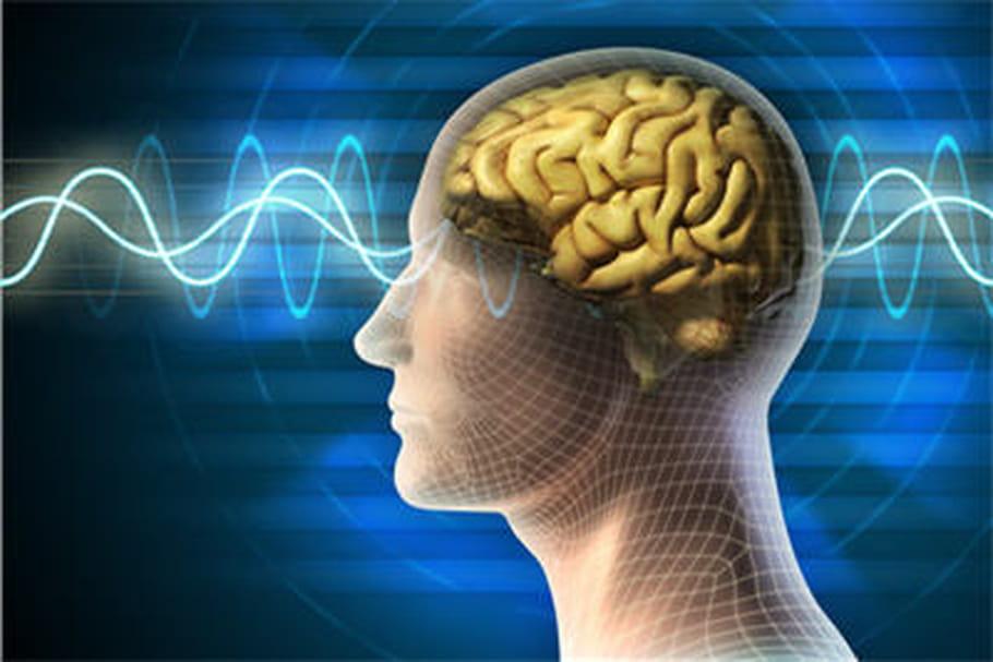 Sclérose en plaques: informez-vous sur les traitements