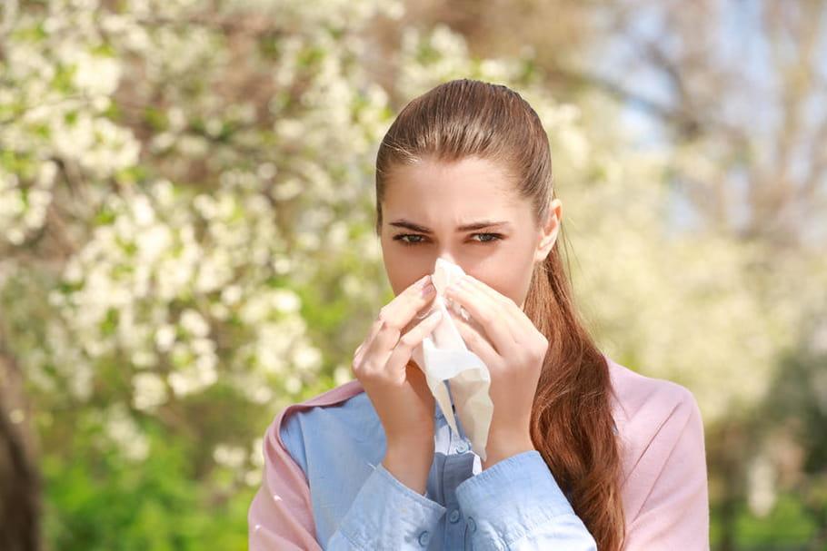Allergie au pollen de cyprès: période, symptôme, traitement