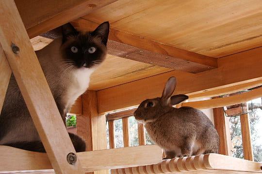 Cachés sous la table
