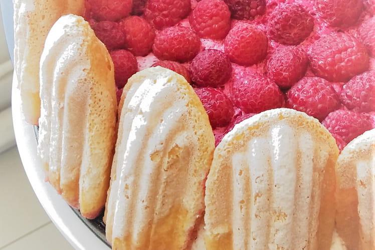 Charlotte aux framboises façon cheesecake