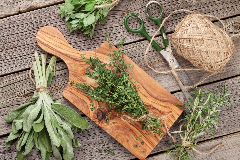 Tout sur les herbes et aromates: les choisir, les conserver, les cuisiner...