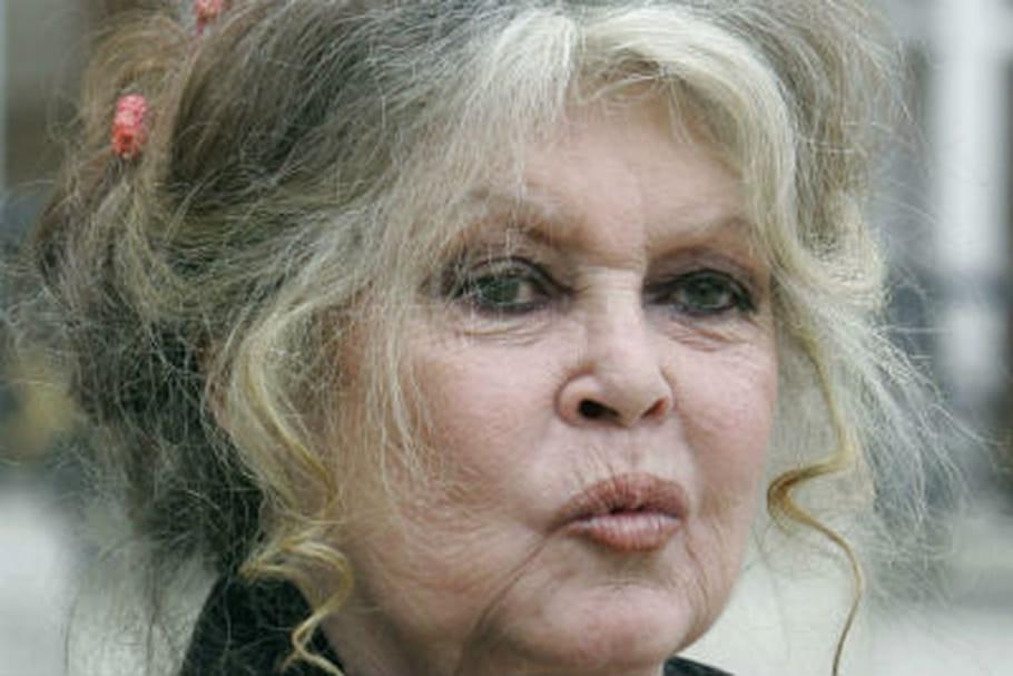Brigitte Bardot face à Laurent Delahousse : entre charme et caprices