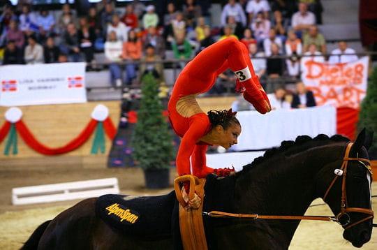 Acrobaties aériennes avec un cheval