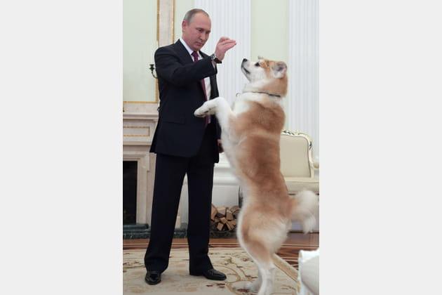 Vladimir Poutine, maître-chien