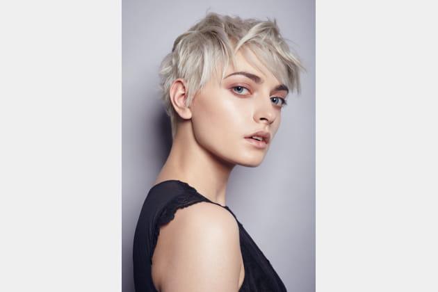 Le blond aux reflets gris